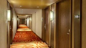 Двери для гостиниц и санаториев
